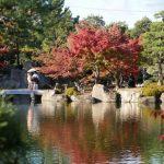 Autumn Leaves in Nagoya