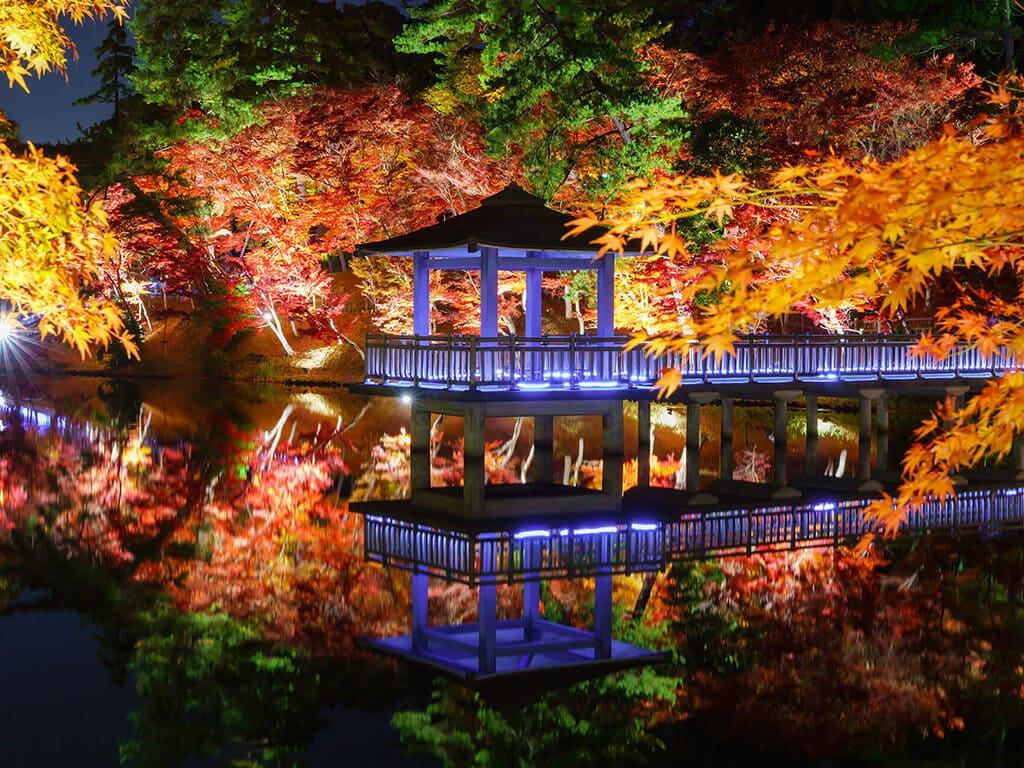 Higashi Park in autumn