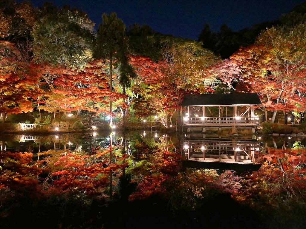 Higashiyama Botanical Garden in Autumn