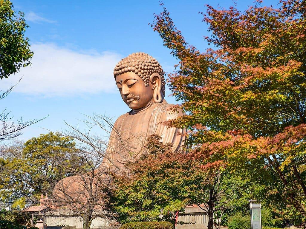Shurakuen Park in autumn