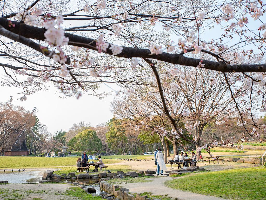 Meijo Park