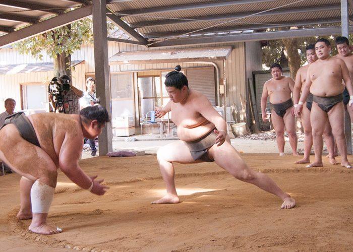 Kasugano Beya Sumo Stable